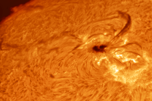 Sun in hydrogen alpha: heart shaped sunspot AR2529 (PRINT AVAILABLE)  Skywatcher HEQ5 - Skywatcher Esprit 100 F/5.5 Triplet Super APO (550mm) - Daystar Quark Chromosphere HA - ASI120MM