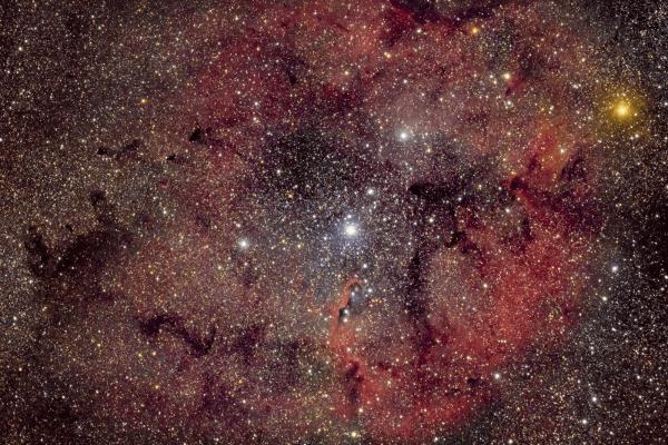 Elephant Trunk Nebula - IC 1396 - UK HEQ5  Skywatcher HEQ5 autoguided - Altair Astro 80 F/6 Triplet Super APO (480mm) - Altair Astro 1x Planostar Doublet field flattener - IDAS P2 - Nikon D750
