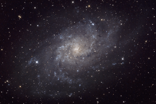 Triangulum Galaxy (M33)  Skywatcher HEQ5 autoguided - Altair Atro 8 inch Ritchey Chretien (1625mm) - Astro Tech 2 inch Field Flattener - Nikon D750
