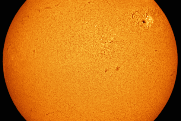 Sun disc in hydrogen alpha (PRINT AVAILABLE)