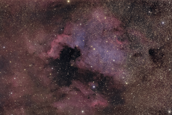 North America Nebula - NGC7000 - UK HEQ5  Skywatcher HEQ5 autoguided - Altair Astro 80 F/6 Triplet Super APO (480mm) - Altair Astro 1x Planostar Doublet field flattener - Nikon D750