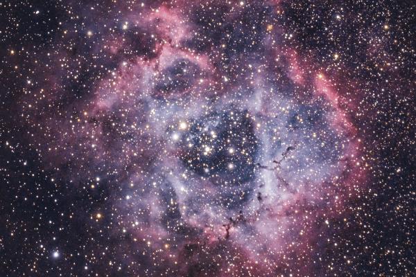 Rosette Nebula - Caldwell 49 - UK HEQ5  Skywatcher HEQ5 autoguided - Altair Astro 80 F/6 Triplet Super APO (480mm) - Altair Astro 1x Planostar Doublet field flattener - Nikon D750